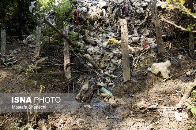 جنگلهای شمال در محاصره زباله و شیرآبه! بلایی که بر سر جنگلهای شمال آوردند؛ تکاندهنده