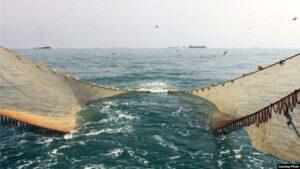 مرگ آبزیان در خلیج فارس و دریای خزر